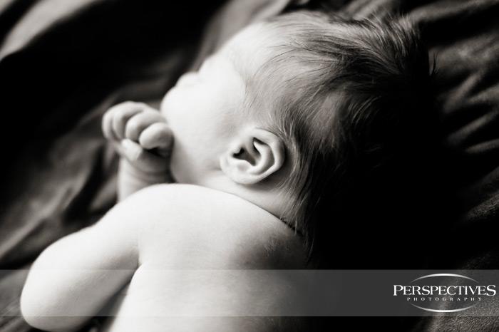 Boston Newborn Photography